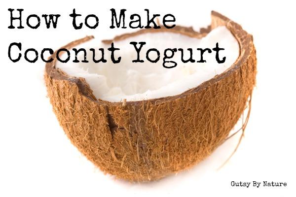 Coconut yogurt starter
