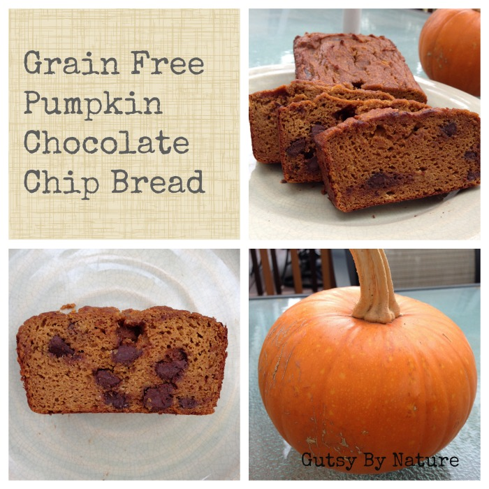 Pumpkin Chocolate Chip Bread (Grain Free, Dairy Free, Nut Free ...