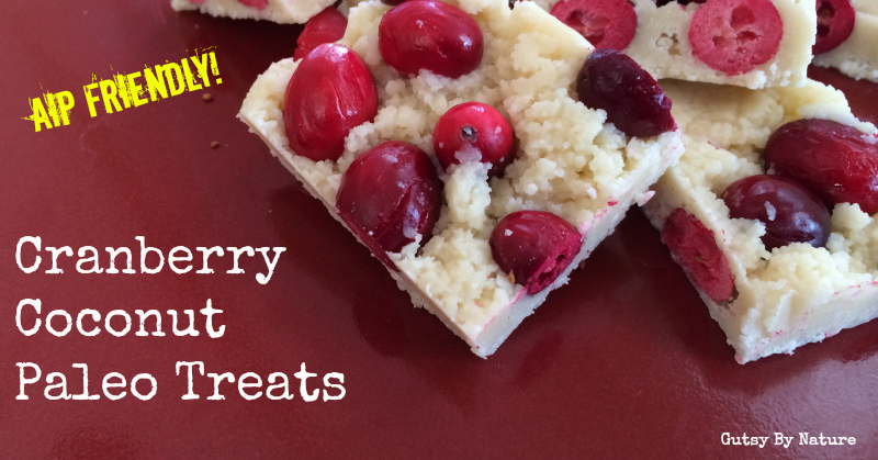 cranberry coconut paleo treats