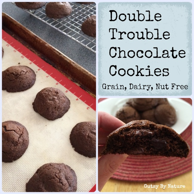 double trouble chocolate cookies